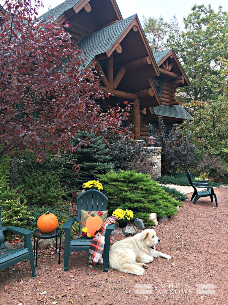 Log Cabin, great Pyrenees fall decor