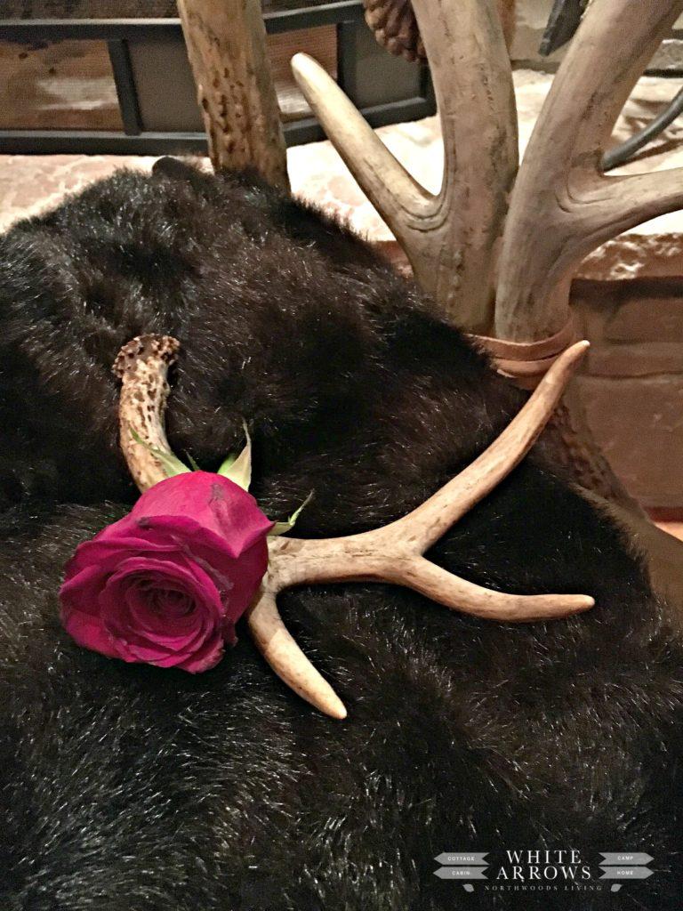Valentine's, Antler, Red Rose