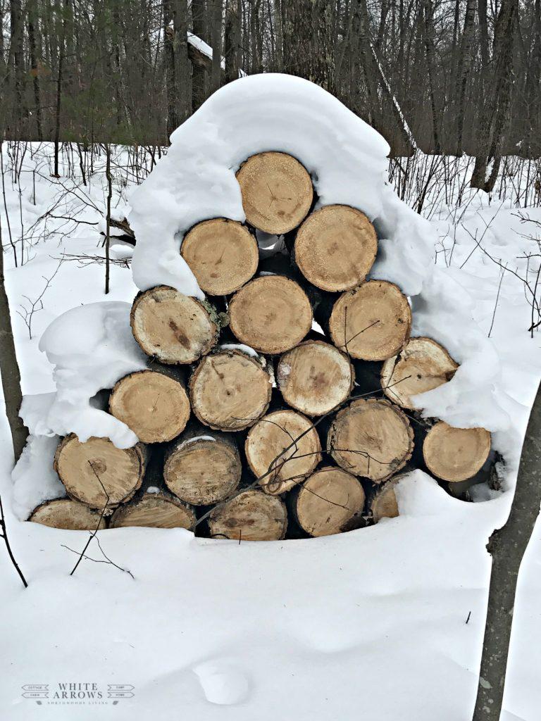 winter, wood pile, wood pile in snow, fire wood, logs