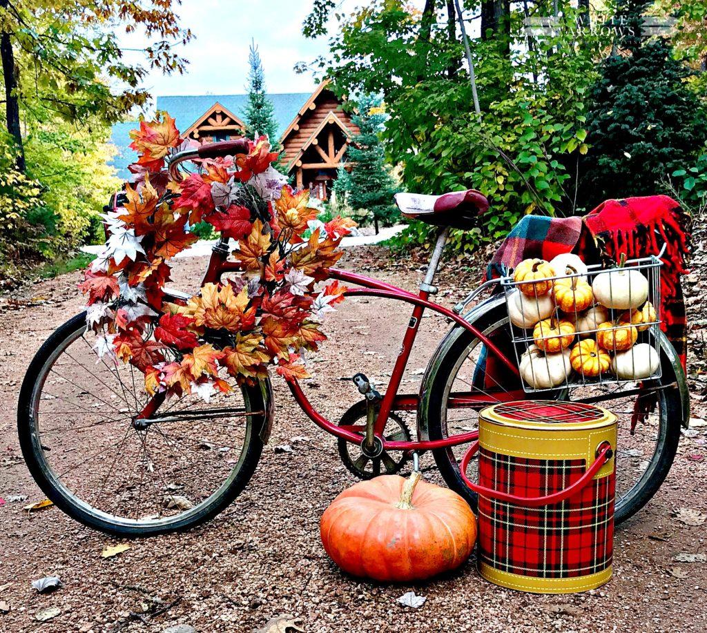 Autumn Decor, Fall Porch, Fall Decor, Fall Front Porch, mums and pumpkins, plaid, log cabin, schwa, vintage bike, scotch cooler