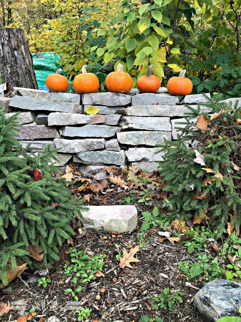 Fall Decor, Five Little Pumpkins