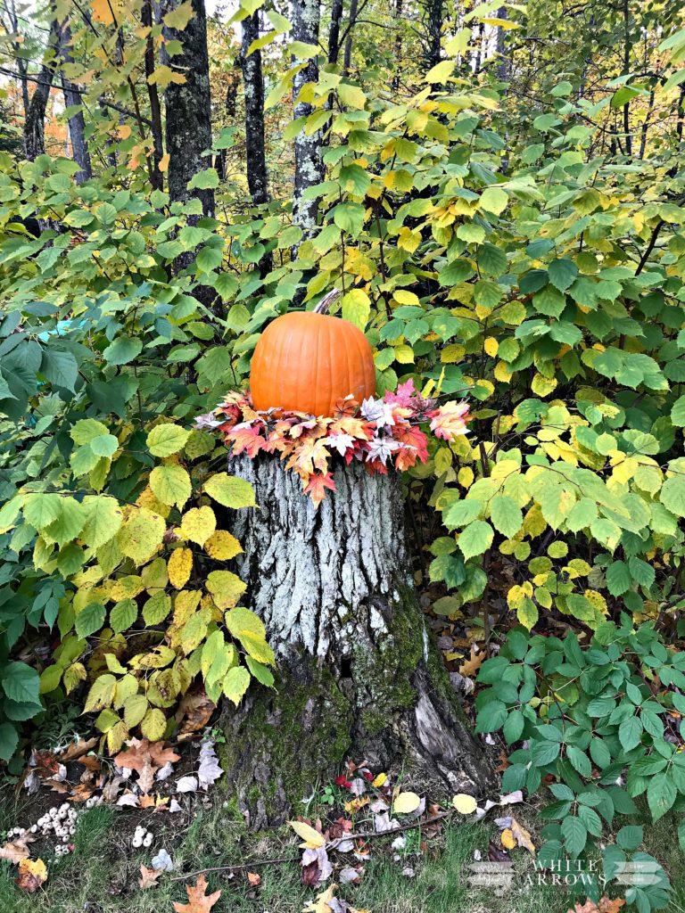 Fall Decor, Pumpkin on Stump