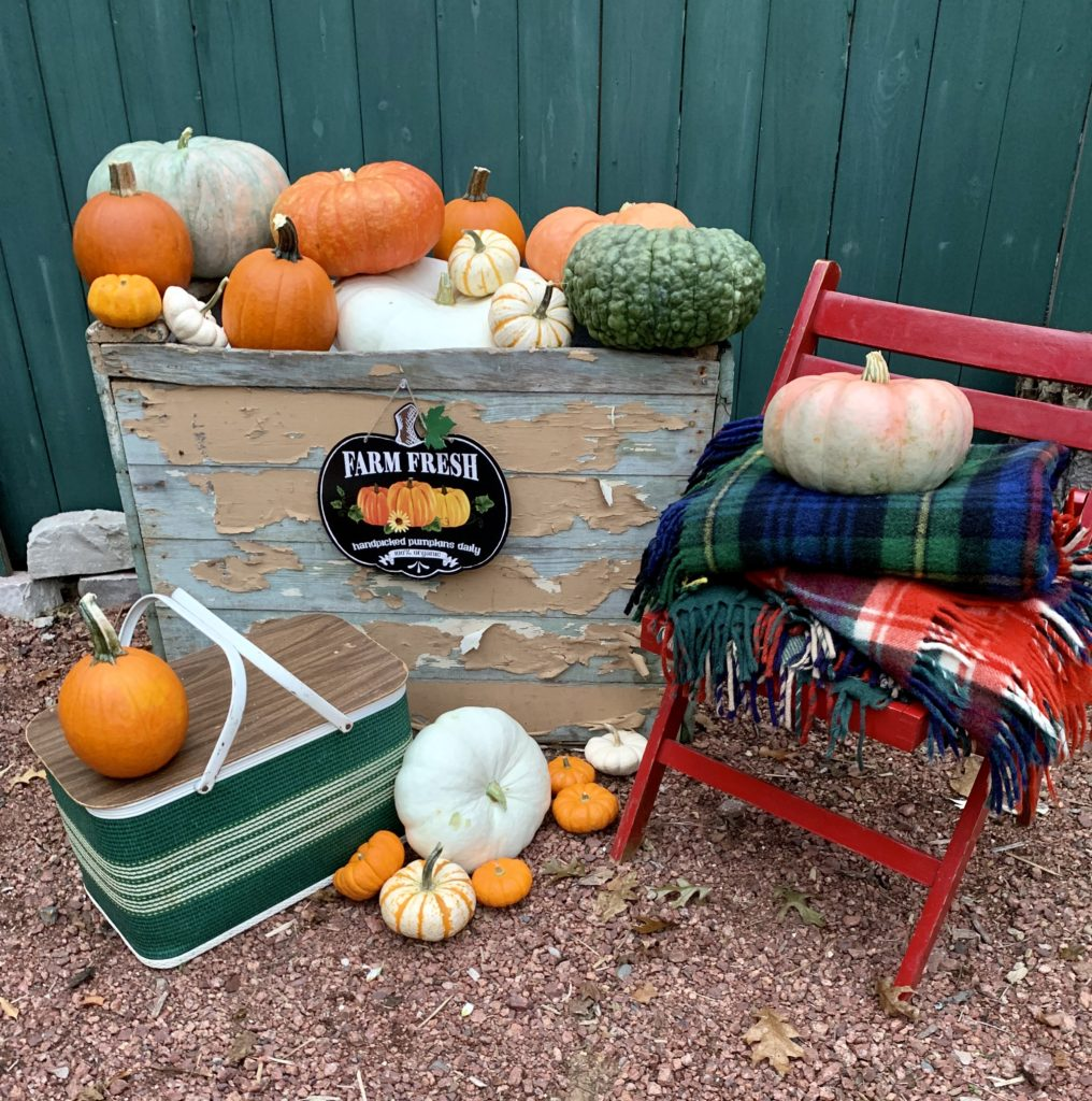 Chippy wood box full of pumpkins