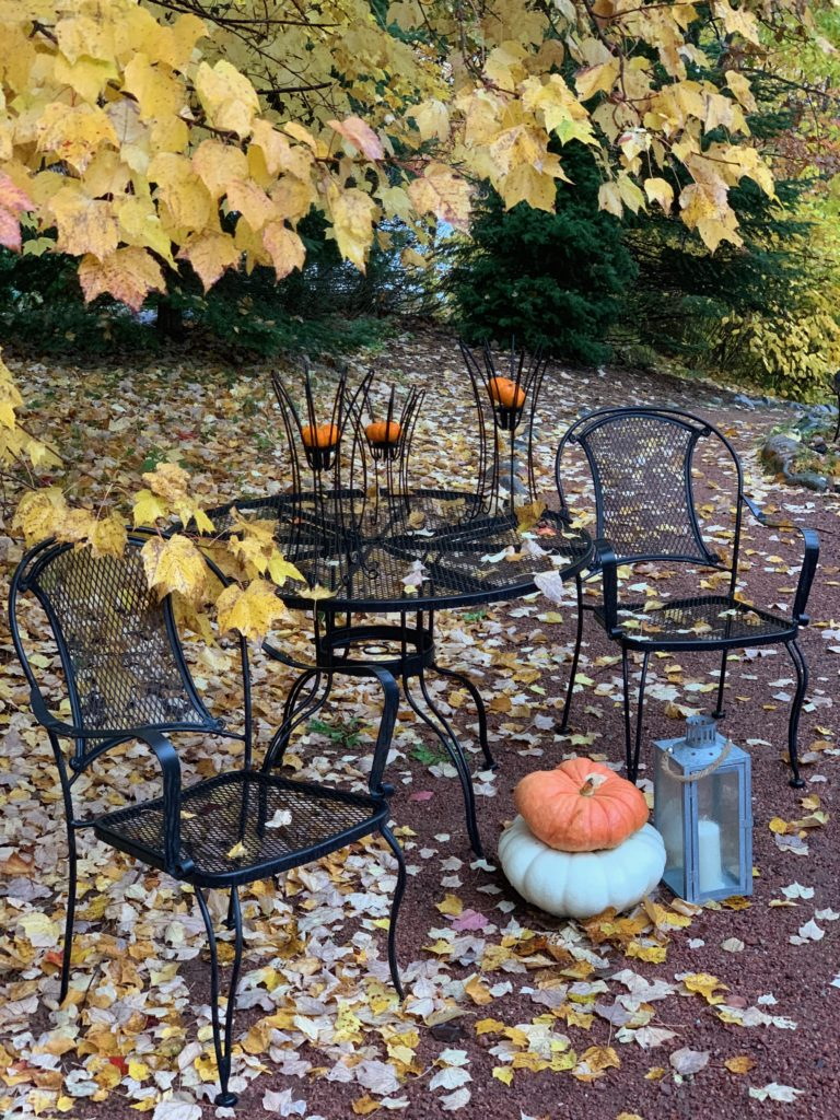 Outdoor Table with pumpkins in the leaves