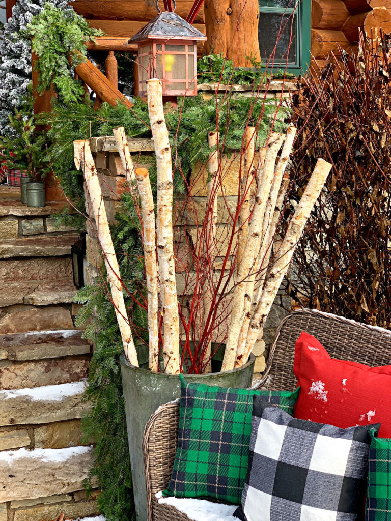 birch rods in green pot on porch