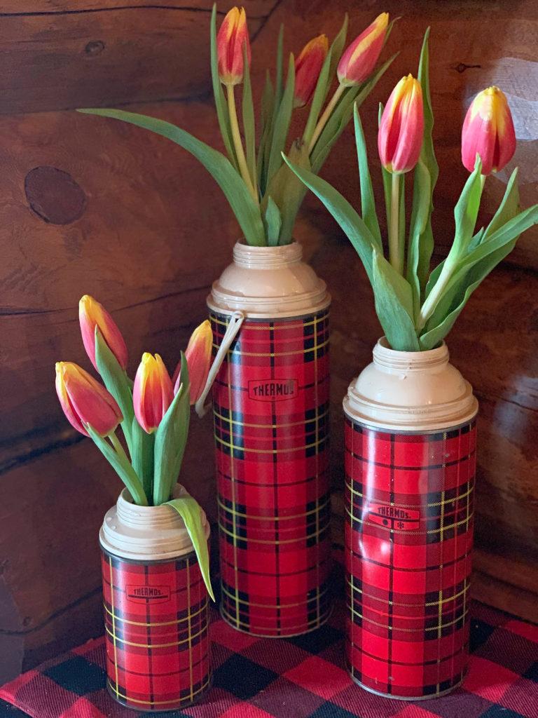 Tulips in Vintage Vase