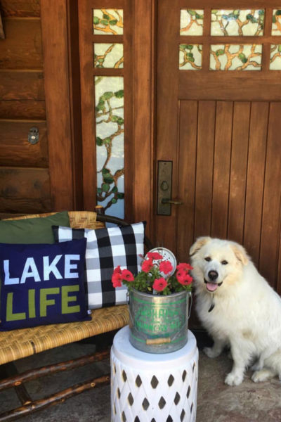 Lake House great pyrenees