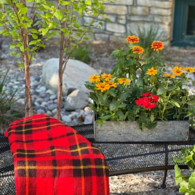 Make a Garden Bench New Again With Spray Paint