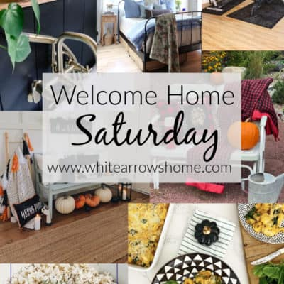 Welcome Home Saturday with Pasha is Home